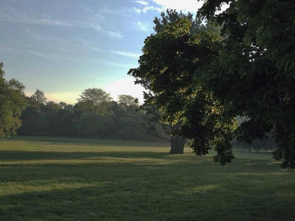 Grüneburgpark Süd